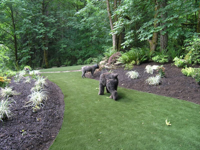 Front yard landscaping for wooded lots backyard turf and for Large lot landscaping ideas