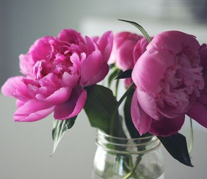 FRESHER FLOWERS - in about 1 litre of water dissolve 3 tablespoons of sugar and 2 tablespoons of vinegar and fill the vase with the mixture.