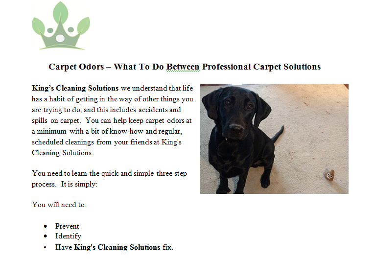 We Will Get To The Bottom Of The Smell In Short Order And Quickly Get The Smell From The Carpet And Out Of You Carpet Solutions Carpet Odors Cleaning Solutions