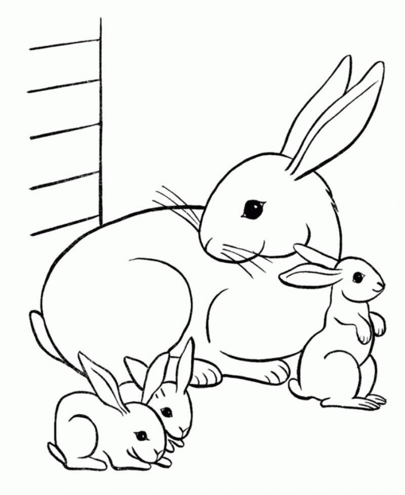 Cute Bunny Coloring Pages For Kids Activity Bunny Coloring Pages Family Coloring Pages Animal Coloring Pages