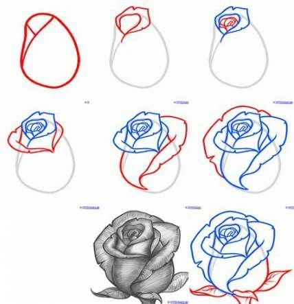Super flowers sketch pencil how to paint 42 ideas