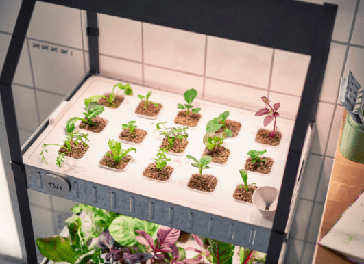 Ikea Hydroponic Grow Kit Ikea Has Moved Into The Realm Of Indoor Gardening With Their Very Own Ikea G Hydroponics System Hydroponics Diy Hydroponic Gardening