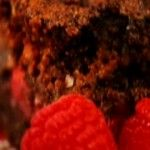 Chocolate Brownie with Raspberries
