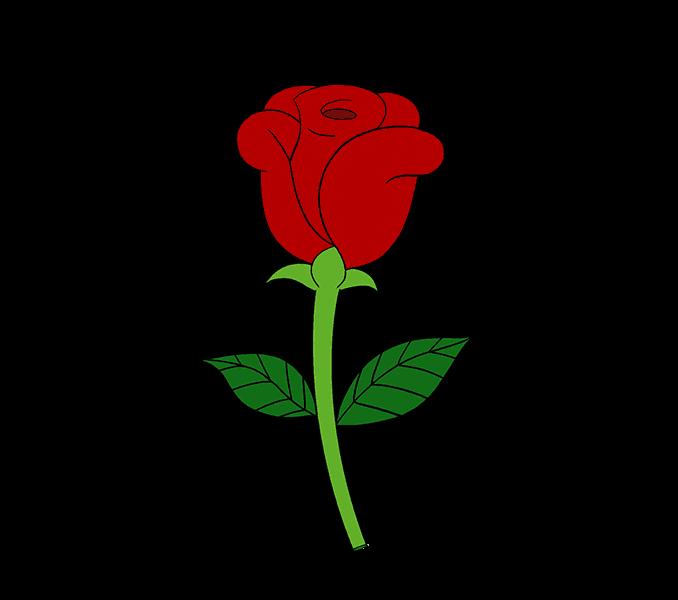 Rose Skull Roses