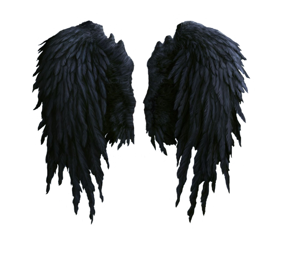 Black Angel Wings Stock Png By Shadow Of Nemo On Deviantart Https Shadow Of Nemo Deviantart Com Art Black Angel Win Black Angel Wings Wings Png Black Angels