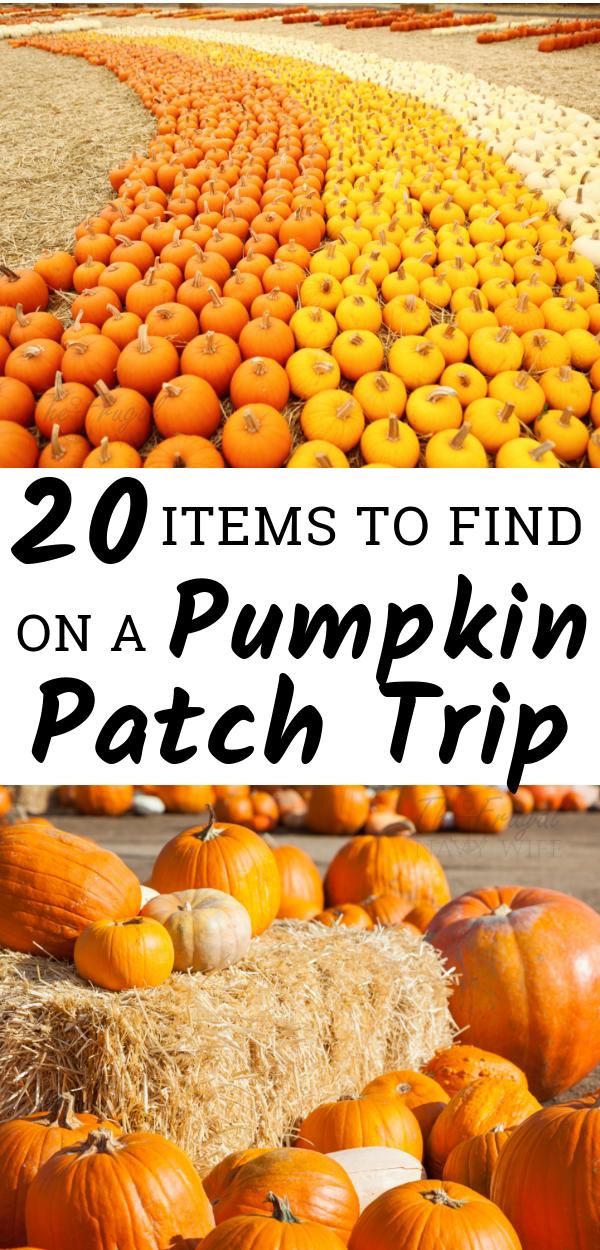 20 Fun Must Find Items on a Fall Pumpkin Patch Trip #pumpkinpatch