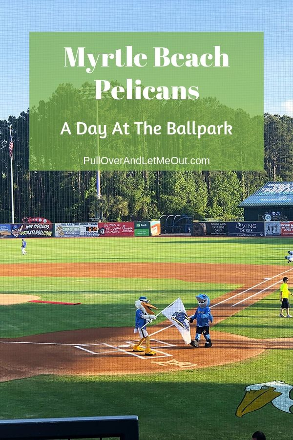 Myrtle Beach Pelicans A Day At The Ballpark Myrtle
