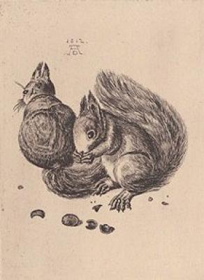 Google Image Result for http://2.bp.blogspot.com/_RnoICdmSZT8/R7h2uP7b5MI/AAAAAAAAALU/iqxHPFKvhUg/s400/durer-squirrel.jpg