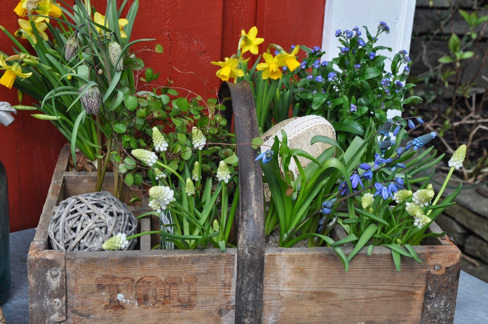 springflowers in an old soda crate