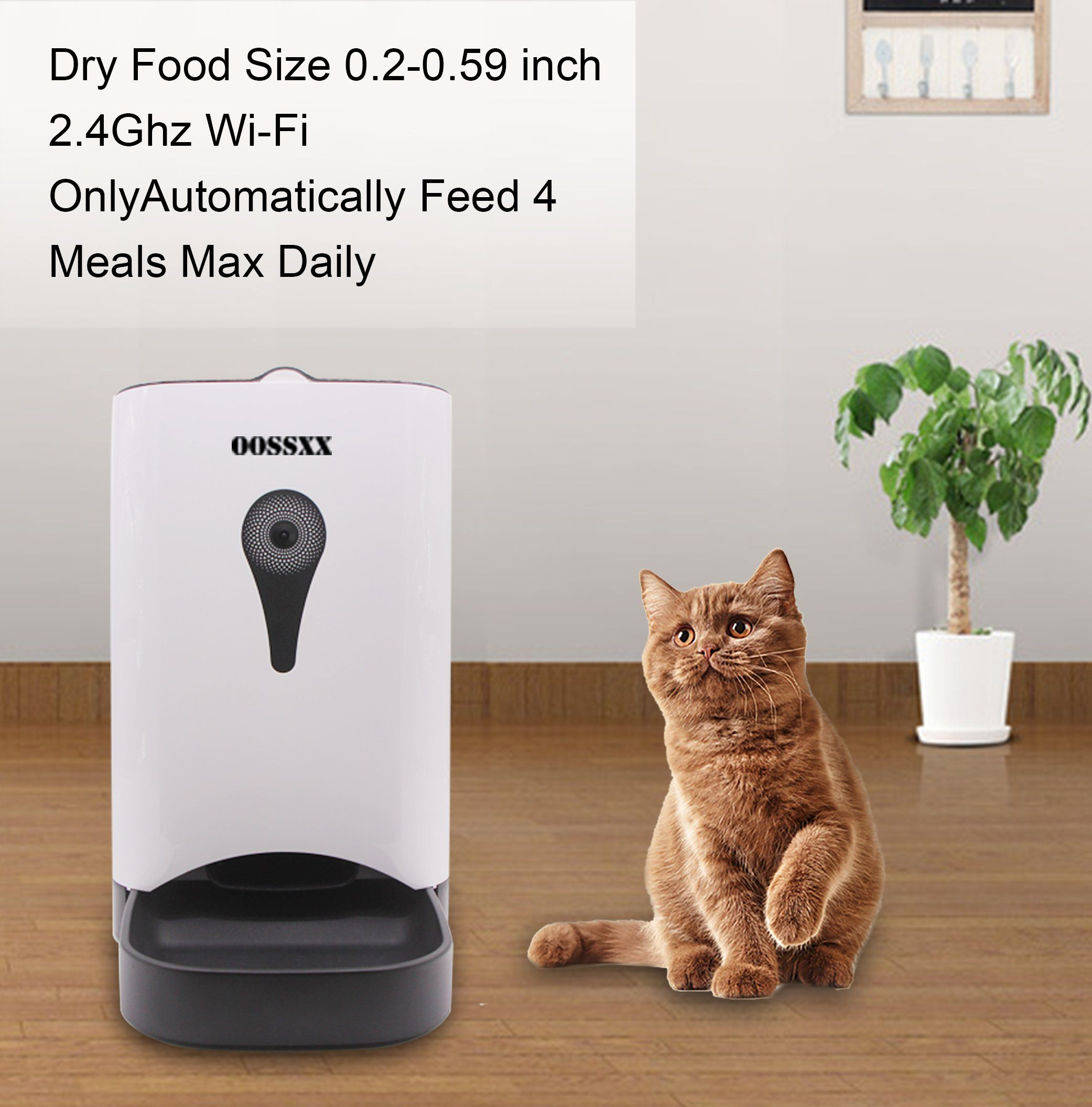 petsafe pet center shop dog and automatic feed cat en product petcostore petco feeder smart