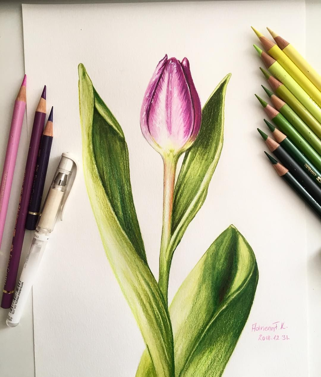 Adrienn F K On Instagram Day 6 6 Nap Tulip A4 Colored