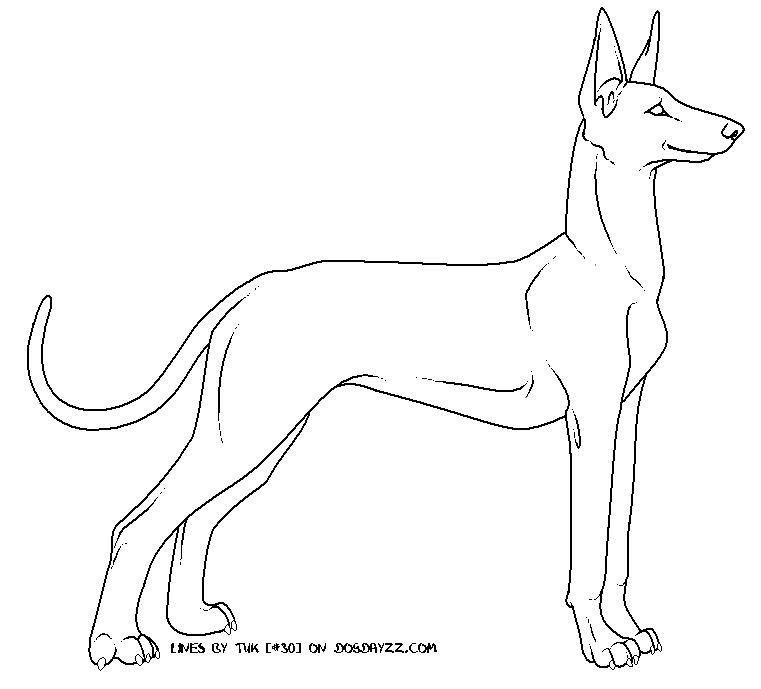 Dog Large Energy Express Outlines Dog Outline Dog Art Pharaoh