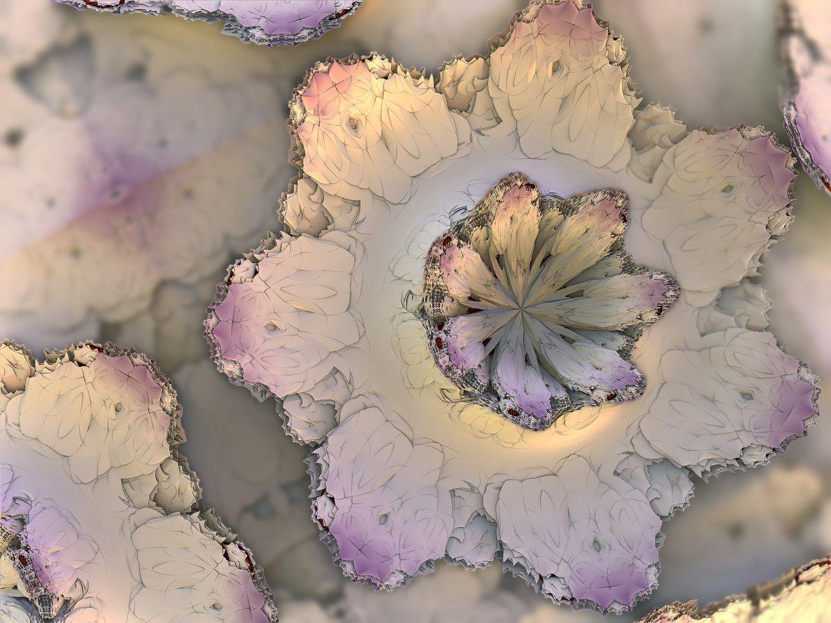 White Flower by recycledrelatives on DeviantArt