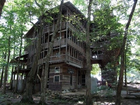 the biggest treehouse in the world - Biggest Treehouse In The World
