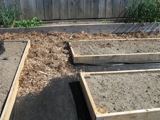 Building Planting A Raised Bed Garden For Growing Vegetables Raised Garden Beds Garden Beds Growing Vegetables