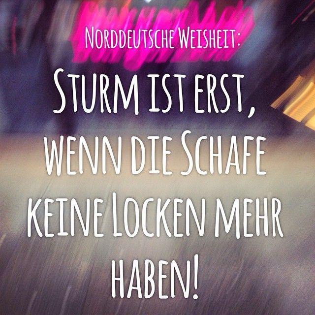 #typischhamburch Weisheit ⚓️ Sturm ist erst, wenn die Schafe keine Locken mehr haben!  #hamburg #welovehh #igershamburg #hamburgcity #ilovehh #wirsindhamburg #ig_deutschland #hamburgmeineperle #instahamburg #hamburch #ig_hamburg #igersgermany #igersoftheday #schönstestadtderwelt #iphonesia #iphoneonly #statigram #amazing #instadaily #photooftheday #bestoftheday #webstagram #instamood #love #instago #instalove #awesome #instagood
