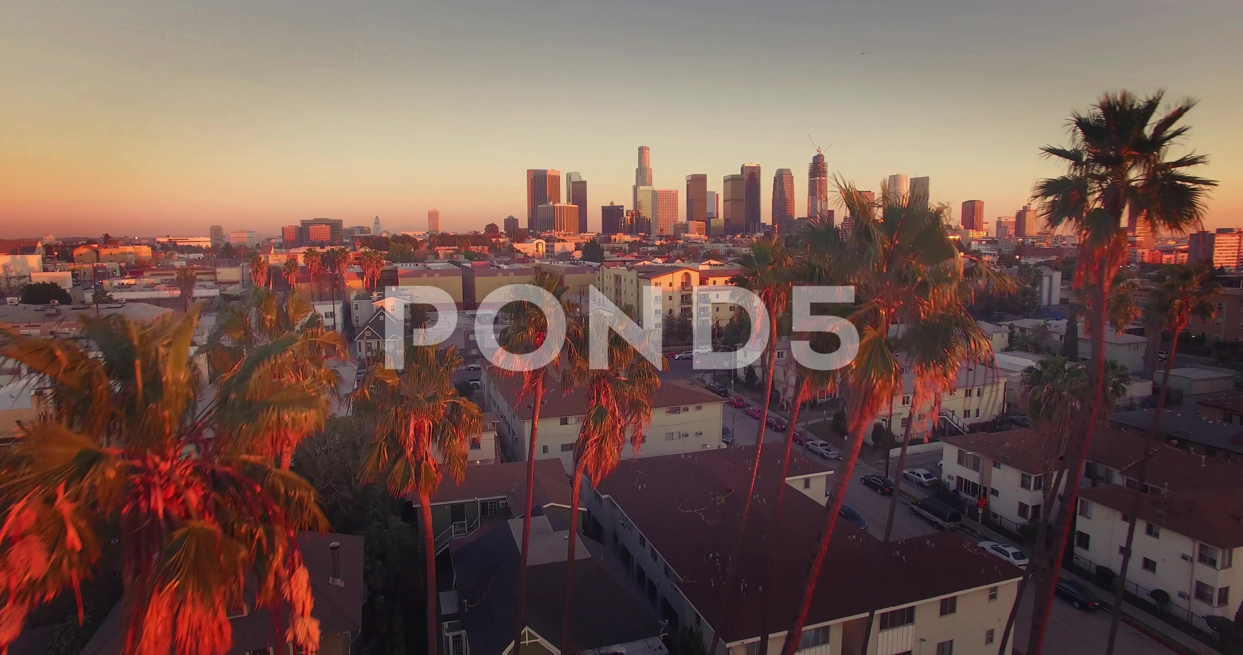 Aerial View Downtown Los Angeles Skyline Revealing Through Row Palm Trees 4k Uhd Stock Footage Los Angele Los Angeles Skyline Aerial View Downtown Los Angeles
