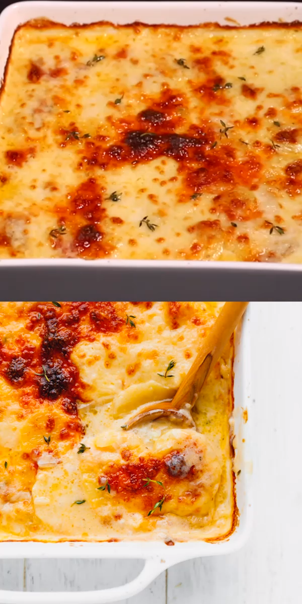 Easy to make, these scalloped potatoes with chedda