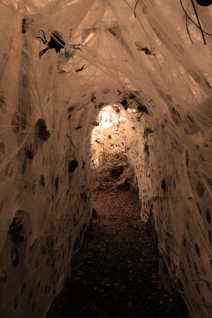 spider haunt tunnel idea packing tape plastic sheeting and spiders - Halloween Spiders
