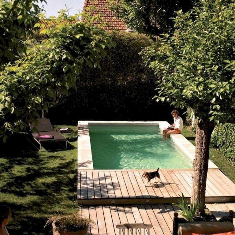 82 Swimming Pool Ideas Small Backyard With Images Backyard