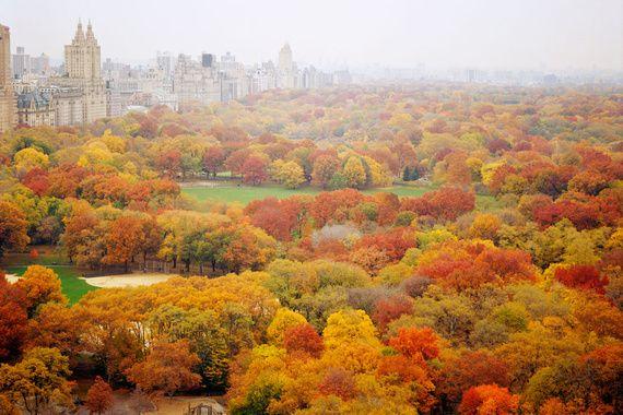 razones para visitar NY