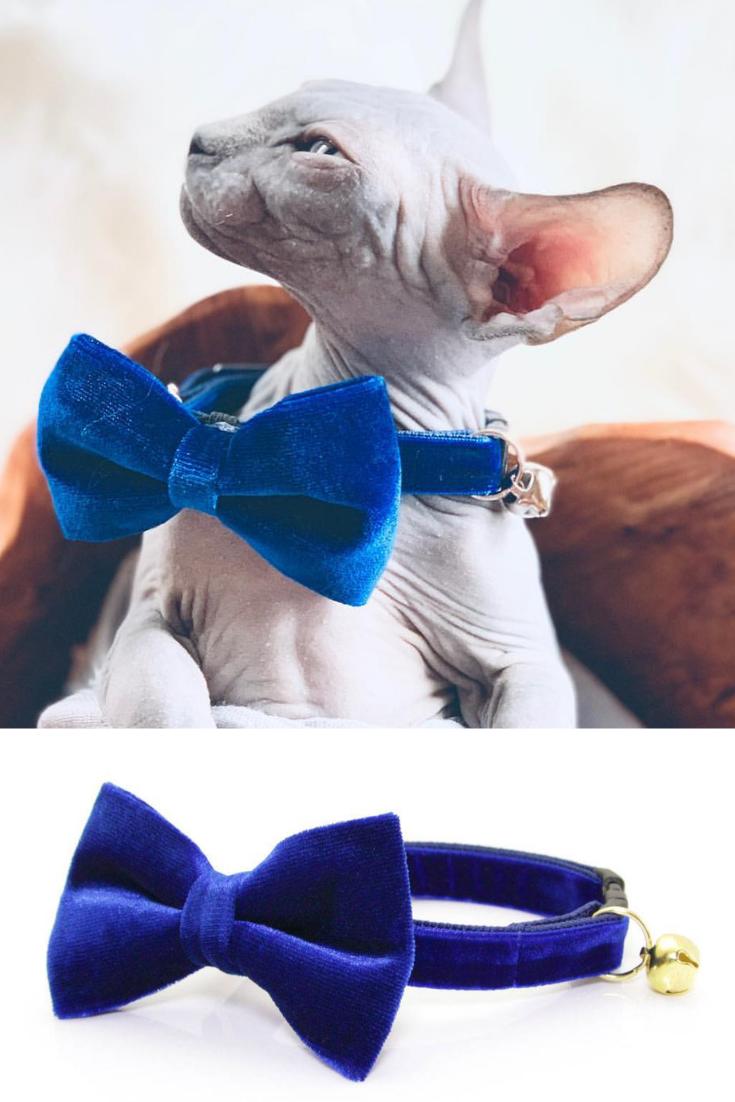 7dbac491e628 Bow Tie Cat Collar Set -