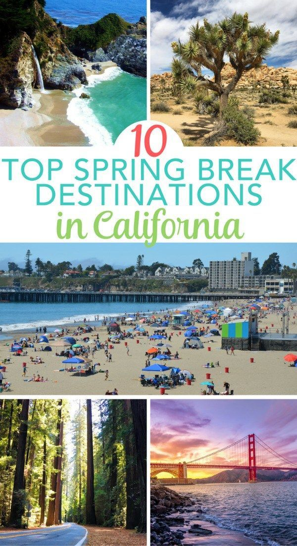 Considering Spring Break In California 10 Amazing Destinations The Golden State To Visit With Kids