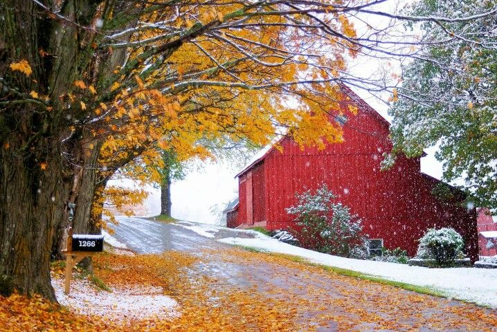 Pin by Connie HallToombs on Christmas/Winter Vermont