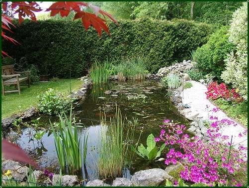 bassin aquatique de jardin jardin secret Pinterest Bassin