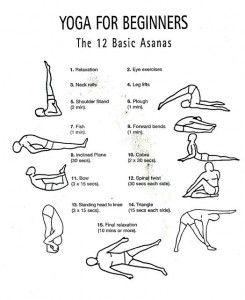 yoga for beginners yoga beginnersyoga yogaposes  yoga
