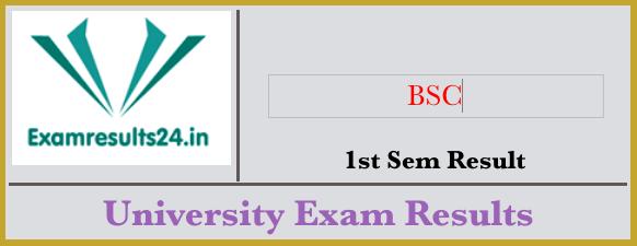 BSC 1st Semester Result 2019 | Result in 2019 | Board result