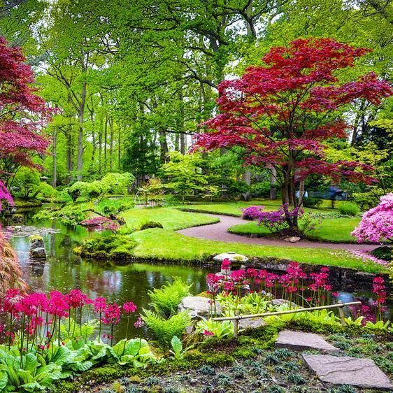 Photo of New Pic famous Japanese Garden Suggestions Japanese gardens are traditional gard…