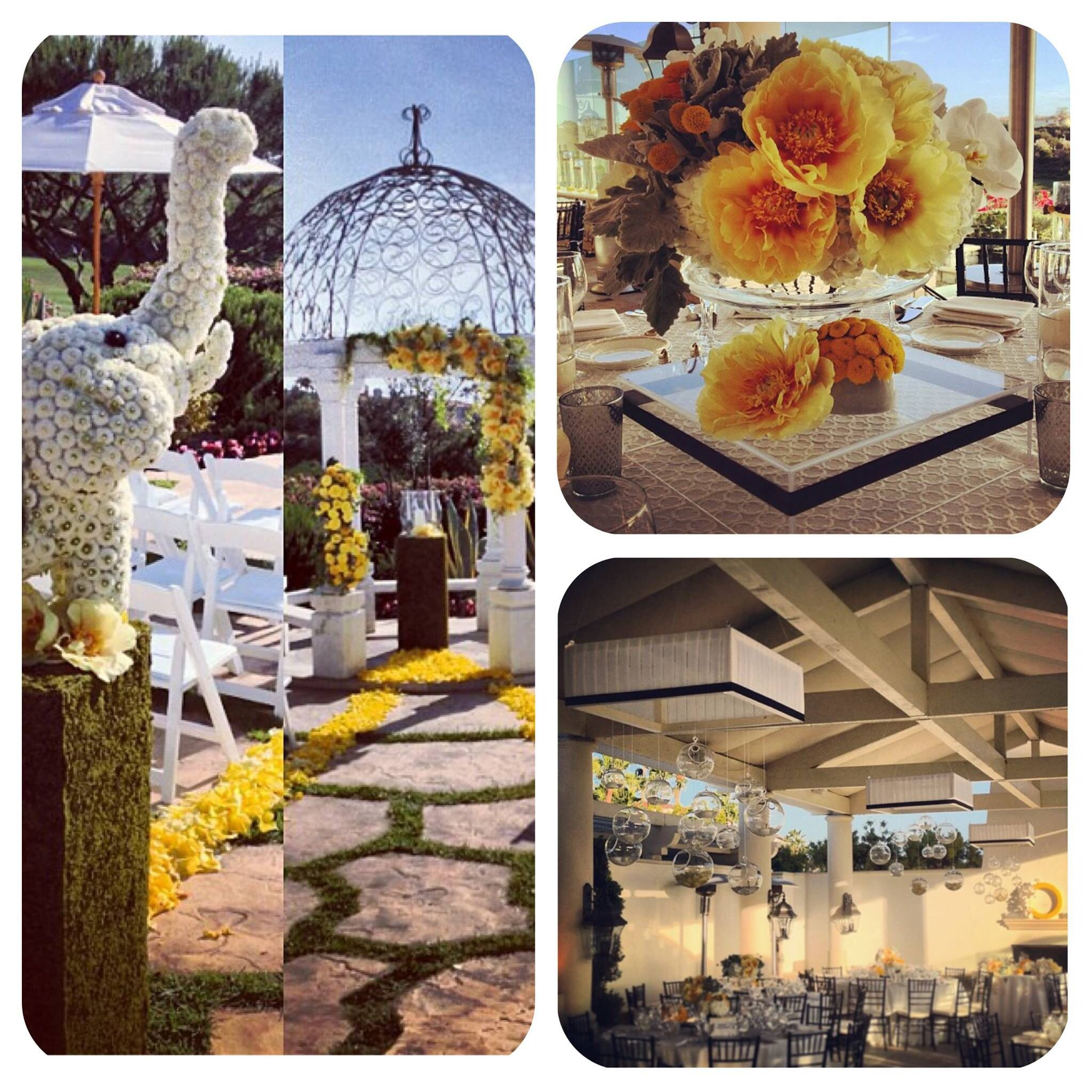 Outdoor Reception, Ceremony, Reception
