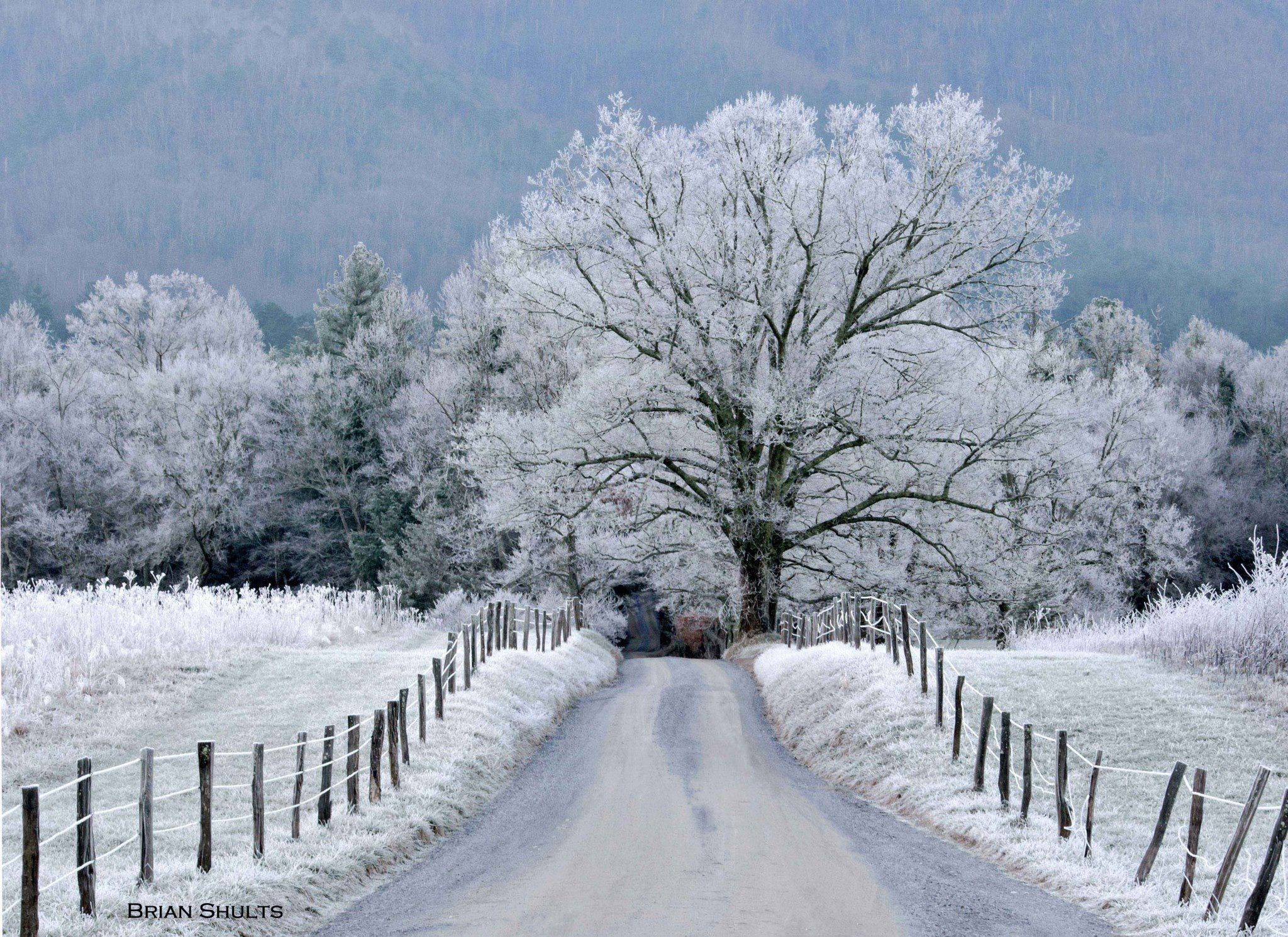 Snow in cade 39 s cove tn gatlinburg things to do for Tennessee winter cabins