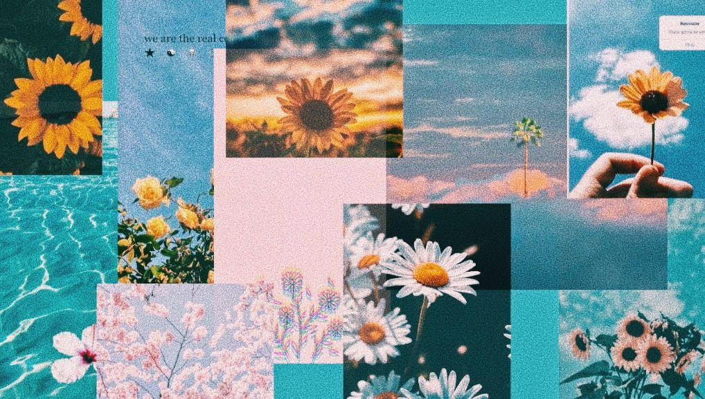 mac pc aesthetic wallpaper em 2020 wallpapers bonitos
