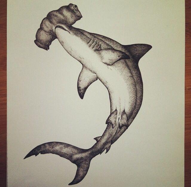 Hammerhead Drawing. #drawing #art #shark