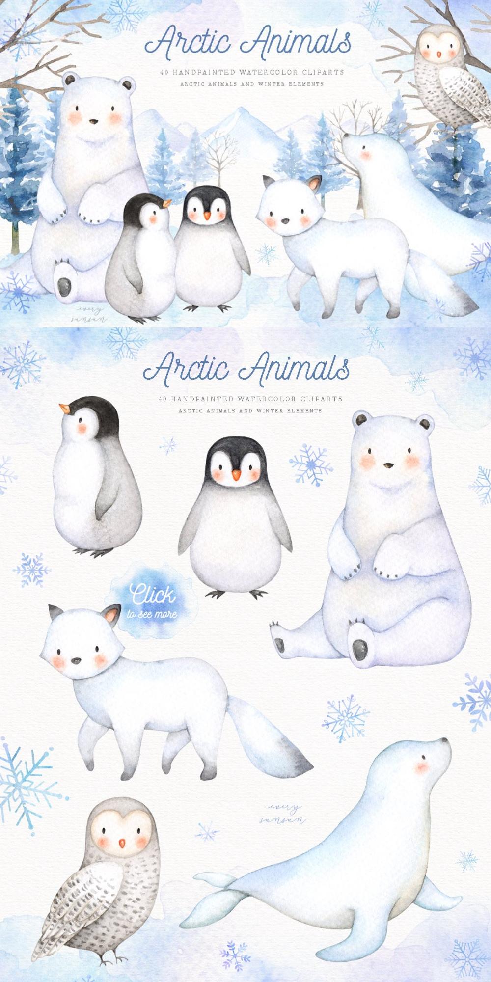 Arctic Animals Watercolor Clip Arts Polar Bear Illustration Animal Illustration Kids Polar Bear Drawing