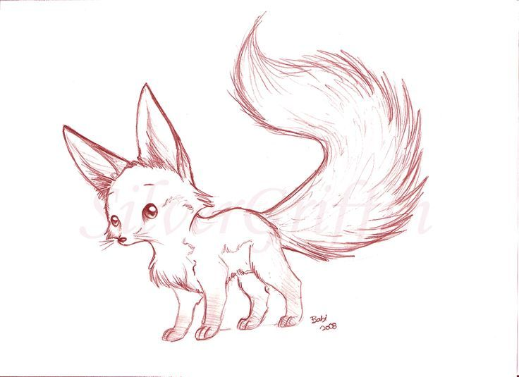 Line Drawing Fox : Pin by laura macey on inspiration pinterest fennec fox foxes