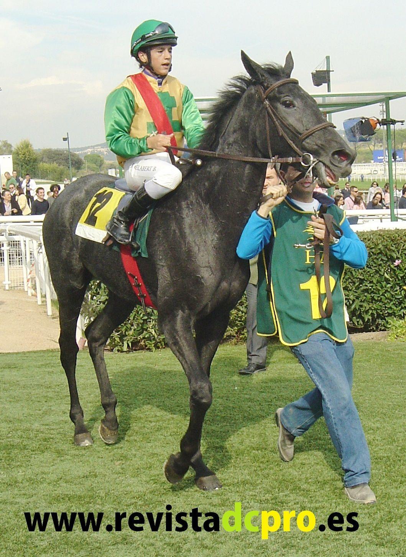 Fotografías realizadas por la revista DC PRO relacionadas con el apasionante mundo de las carreras de caballos en España. www.revistadcpro.es