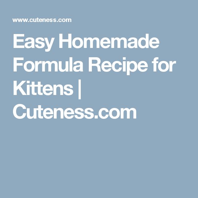 Easy Homemade Formula Recipe For Kittens Cuteness Com Formula