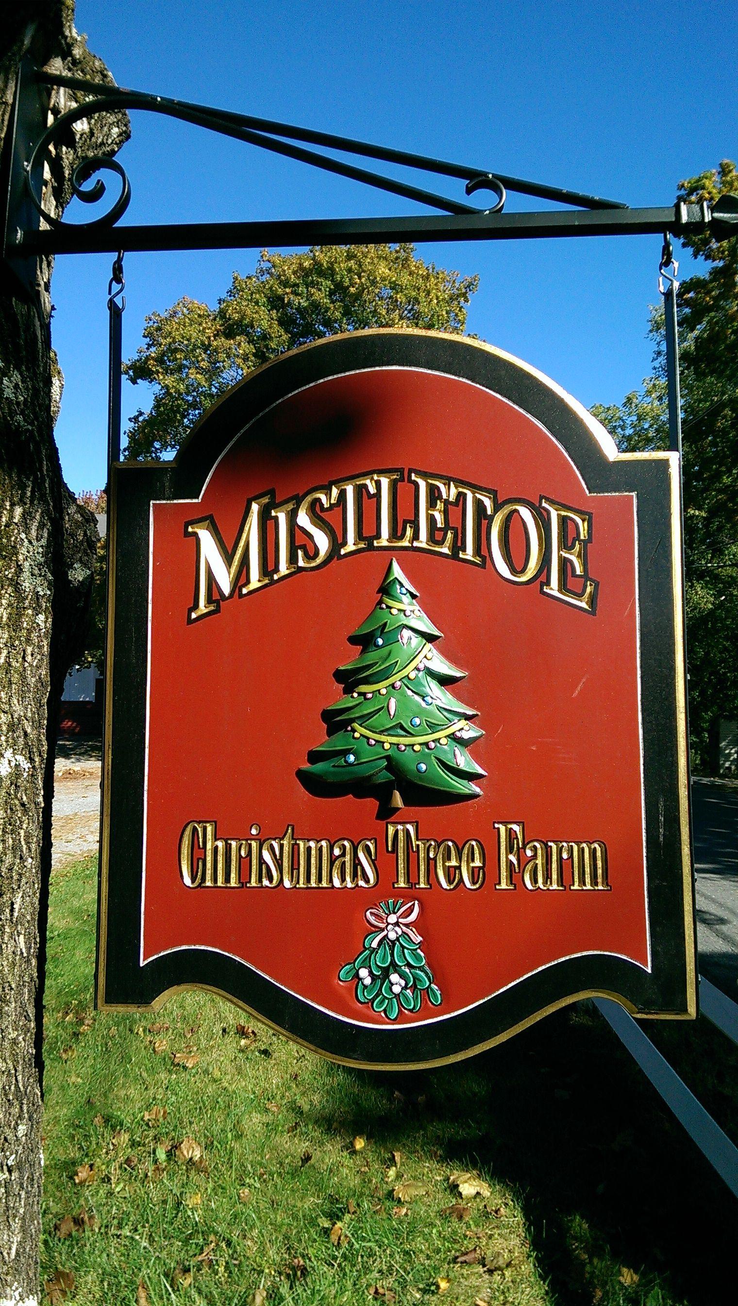 Cut Your Own Christmas Tree Massachusetts