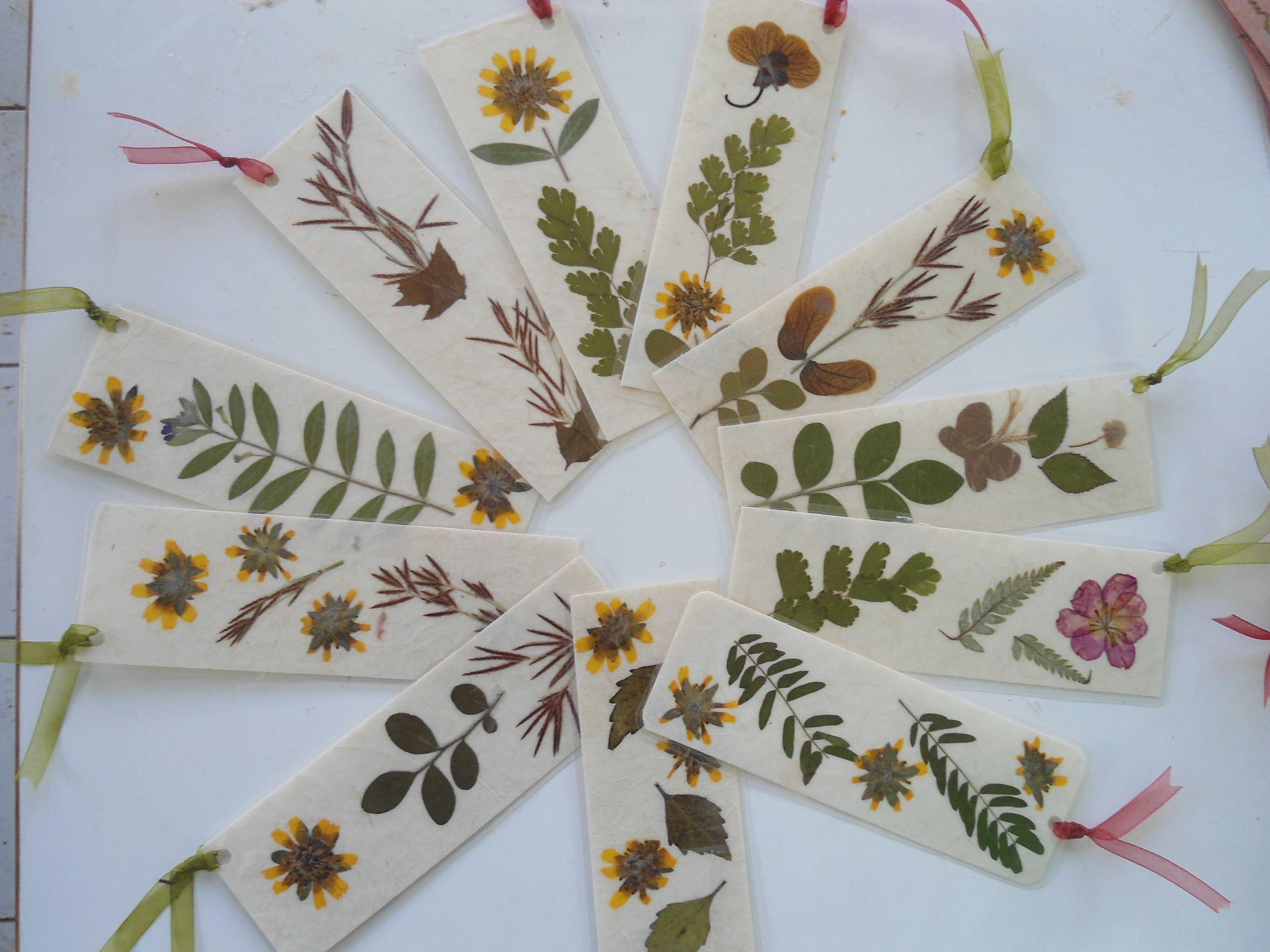 Book Mark Created From Herbarium Dried And Pressed Flower And Banana S Paper Flower Bookmark Pressed Flower Art Pressed Flowers