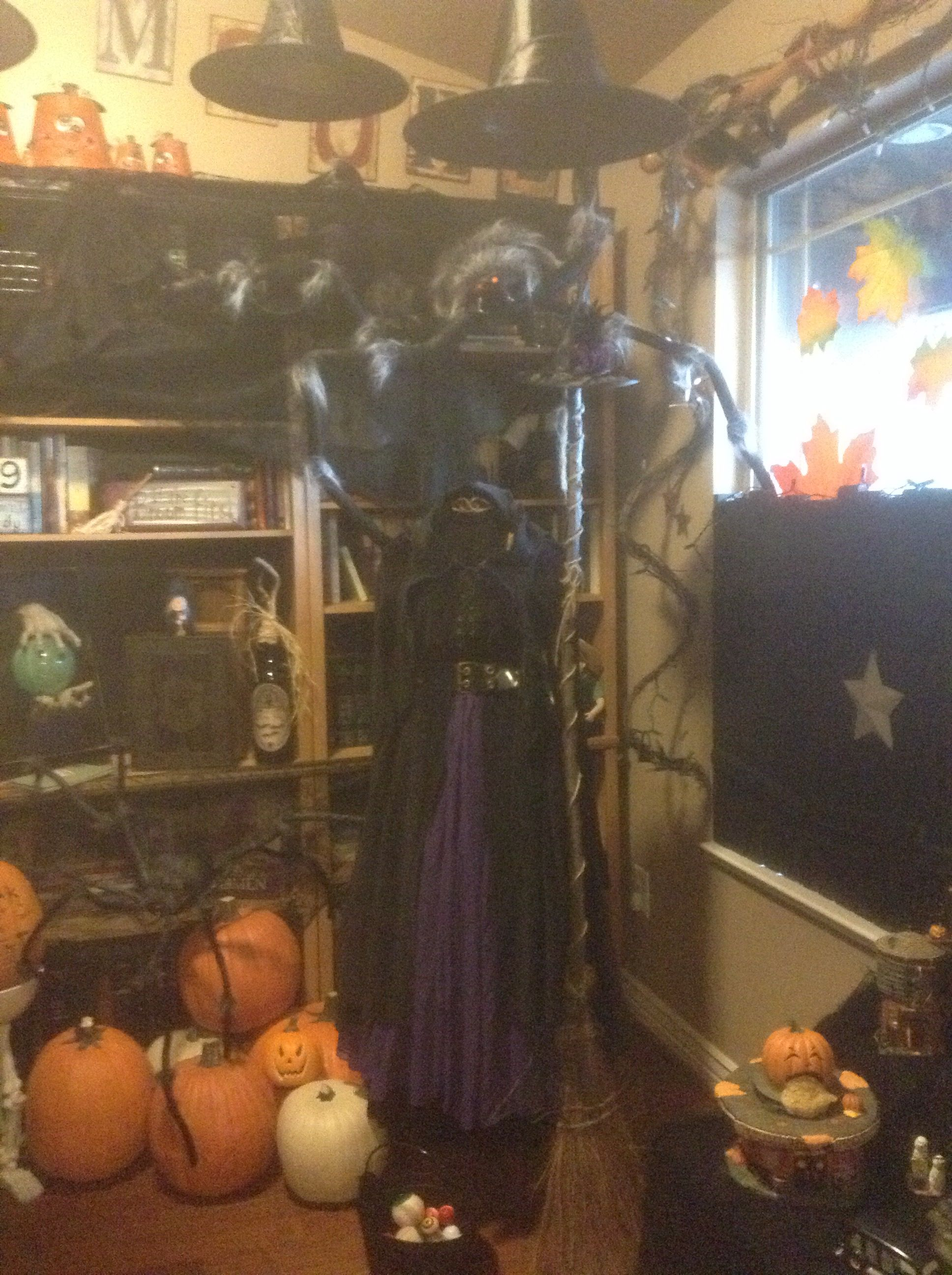 Witches Dress Display