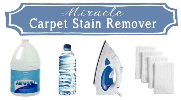 This Is The Best Way To Remove Tough Carpet Stains Stuff
