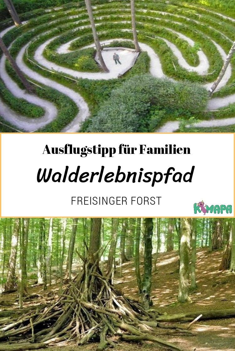 Photo of Forest adventure trail in the Freising Forest – KiMaPa
