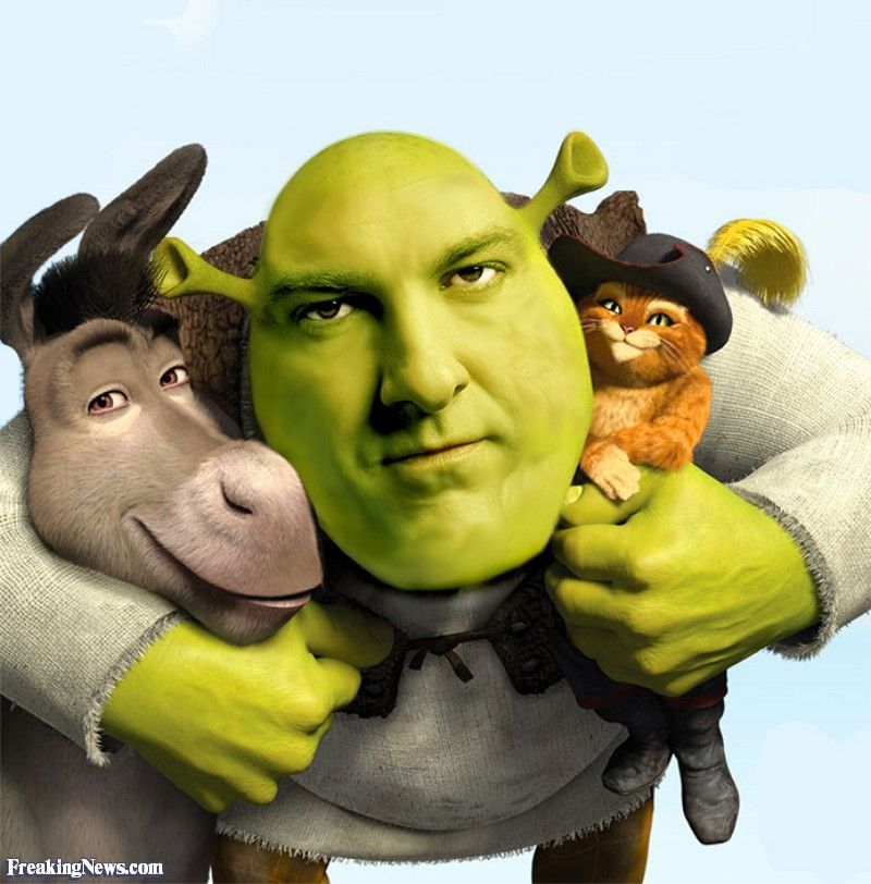 Pin By Wrathleen Kay On Shrek Hybrids Shrek Shrek