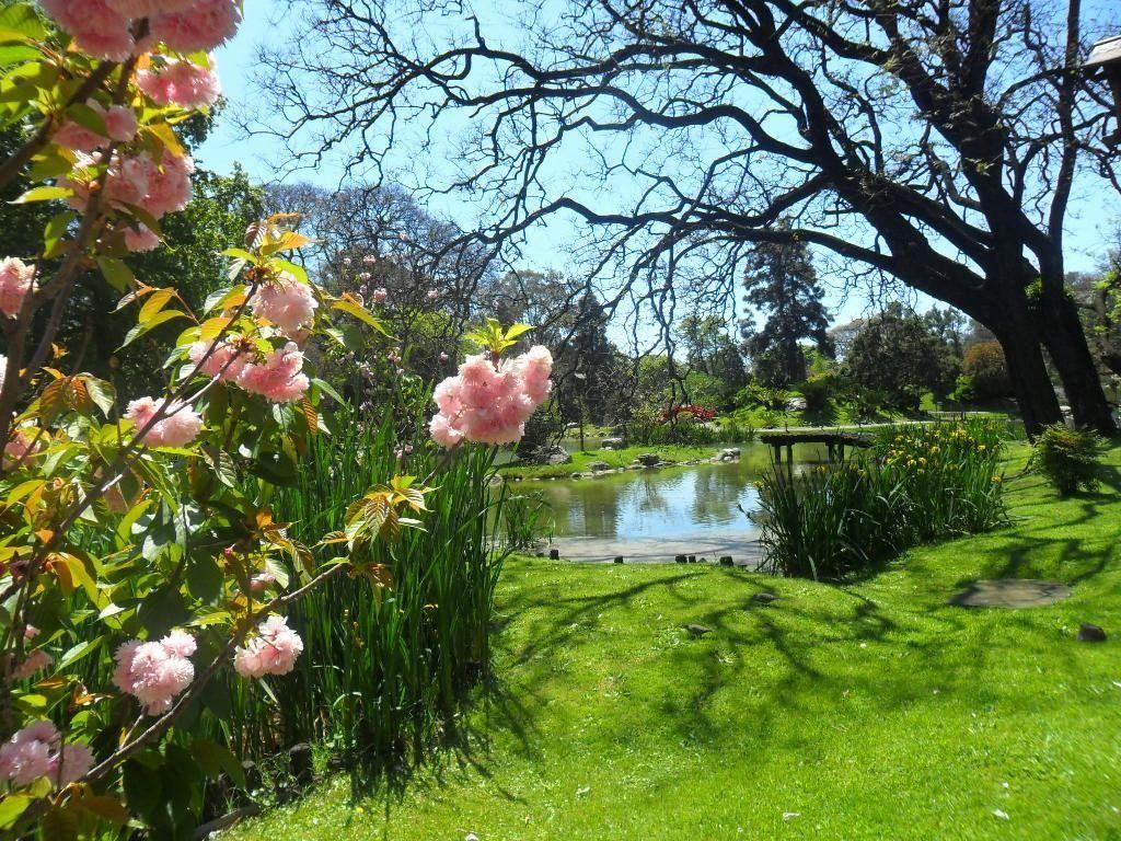 Japanese Garden - Jardín Japonés, Buenos Aires, Argentina: reviews, 33 photos plus top deals - VirtualTourist