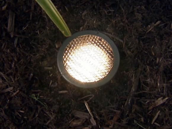 Outdoor Landscape Lighting #landscapelightingdesign