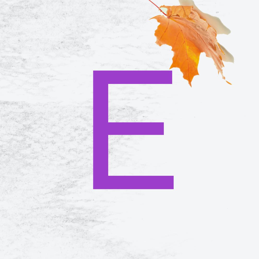 The Escort – Dama de Companie 2015 Online Subtitrat in Romana