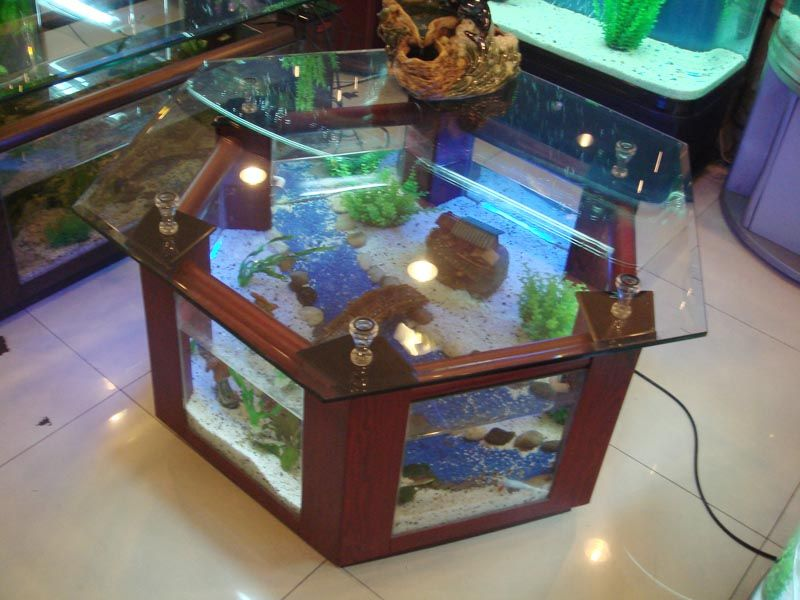 Dining Table Aquarium Completely Fish Ready With Pump Filter